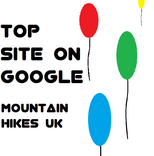 Top Site On Google